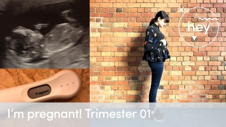 I'm pregnant! Trimester 01x